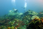 59_Diving_at_Barren_Island_(Lenz_Gunther)
