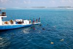 07_Maldivian_fishermen_catching_bait_fish_for_their_skipjack_tuna