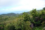 39_View_from_Mount_Limon_(389_m)_the_highest_point_of_Rodrigues