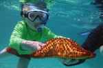 50_During_snorkeling_Linus_finding_a_beautiful_seastar_(Bettina_Pflugfelder-Plank)